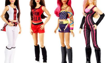 WWE Superstars Girl Dolls